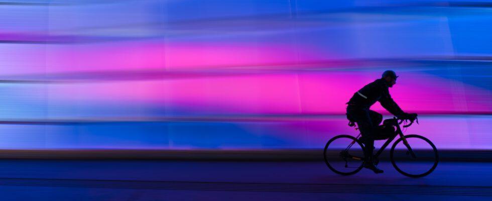 elektrische fiets voordelen