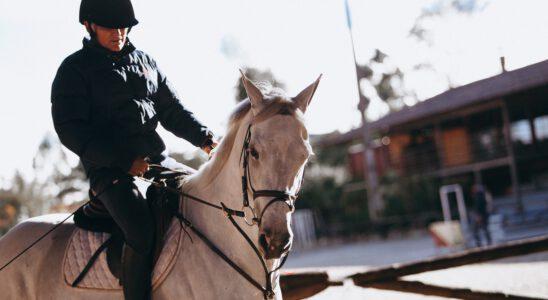 paardrijkleding